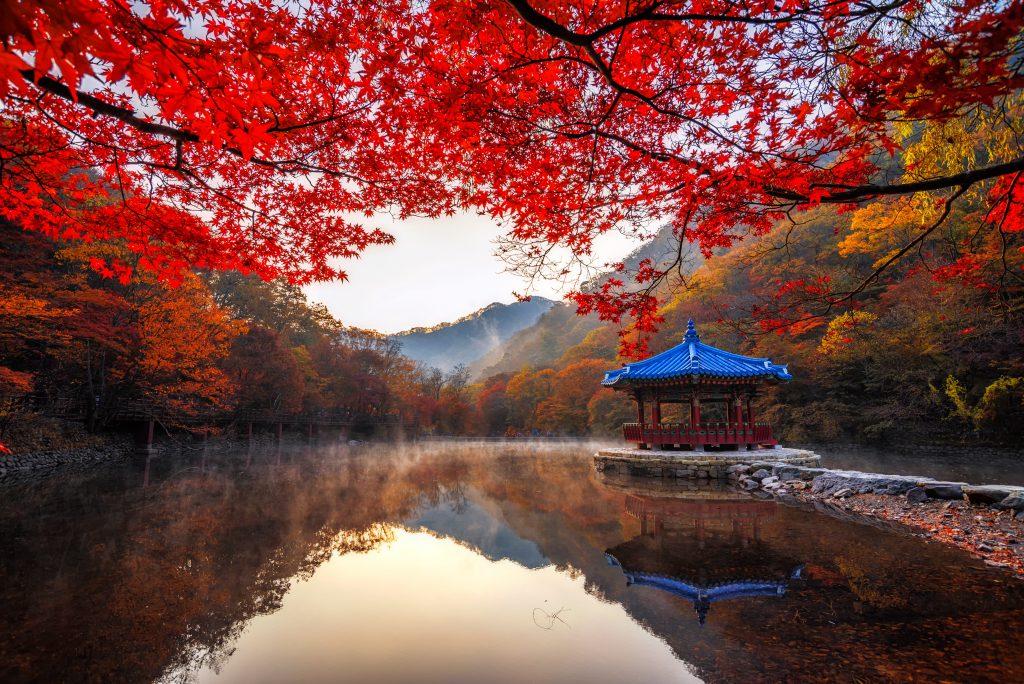 Naejangsan Ulusal Parkı – Güney Kore